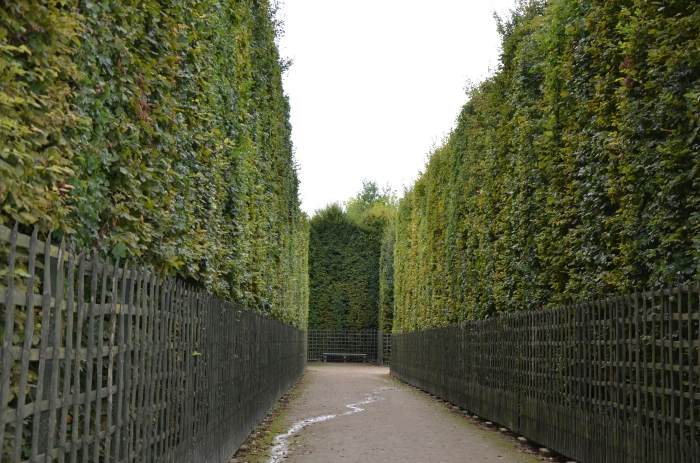 The Harry Potter hedge entrance at Versailles
