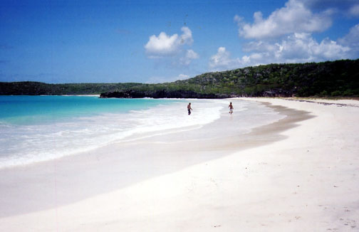 Playa del Corcho on Vieques