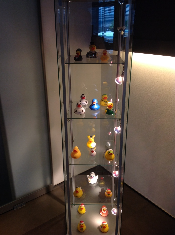 Display of all the most recent ducks!