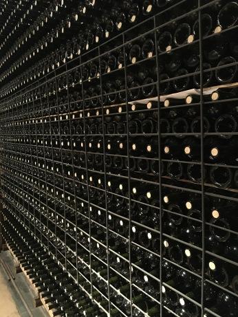 Cellar at Tierras Altas.